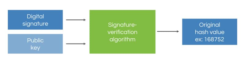 verify the signature